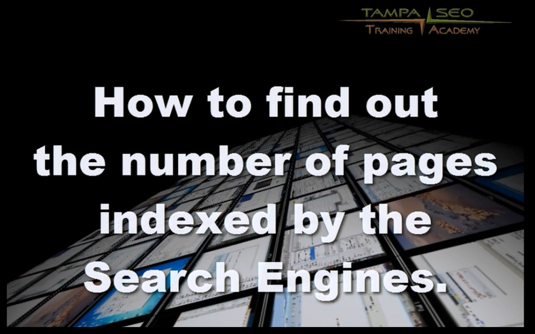 Search Saturation – How many pages of my site are indexed by Google and Bing?