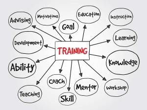 SEO Mentoring Program