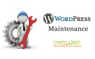 Announcing WordPress Maintenance and Support Plans